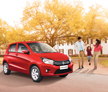 Celerio-Photo-Thumb-5